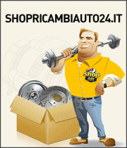 www.shopricambiauto24.it/vehicleselection.htm